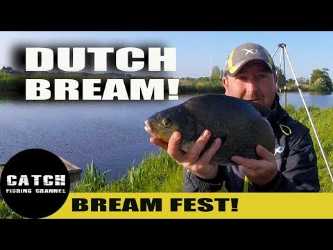 BREAM FISHING FESTIVAL IN HOLLAND - ANGLO DUTCH VOORNE CANAL