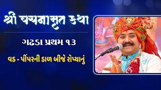 Vachanamrut Katha : NewJersey-USA 2018 | Pu. Lalji Maharaj shree Nrigendraprasadaji  Maharaj
