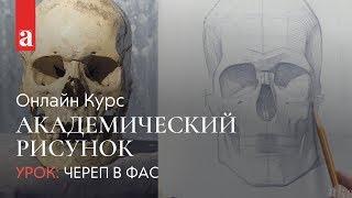 РИСУНОК ЧЕРЕПА В ФАС | Академический рисунок | Денис Чернов