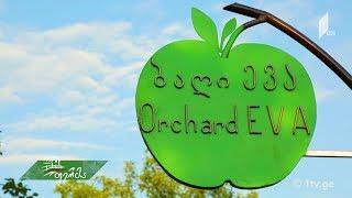 """#ფერმა ლანჩხუთელი ბიჭის ბიზნესგეგმა -  ევროპული გრანტით ოკამში გაშენებული """"ევას ბაღი"""""""