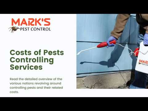 how-much-does-the-pest-inspection-cost-in-2020?- -marks-pest-control