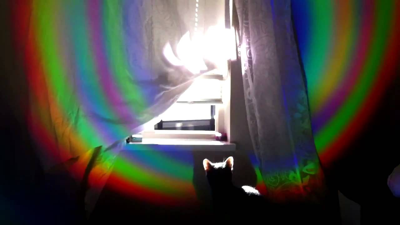 how is a rainbow created A rainbow is created when white light is bent (refracted) while entering a droplet of water, split into separate colours, and reflected back a rainbow is actually round like a circle.