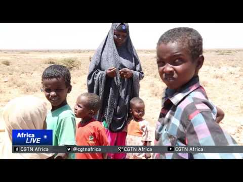 Half of the Somalia's population facing a serious food crisis