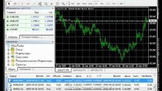Торговля на Форекс и фондовом рынке