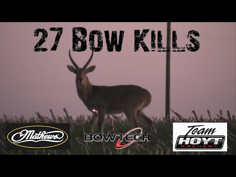 Bow Hunting Africa – 27 Bow Kills In 4 Minutes