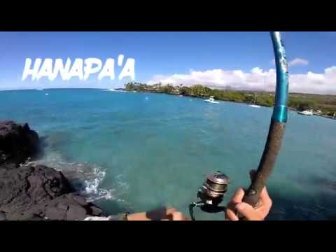 Hawaii Fishing Using Shrimp As Bait