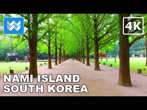 Walking tour of Nami Island in Chuncheon, South Korea 【4K】 🇰🇷