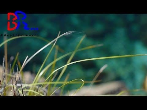 Download relaxdaily N°083 - Cool, Slow, Calm Instrumental Music - Mallorca Coast