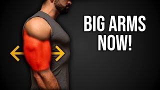 6min Home BIGGER ARMS Workout (DUMBBELLS ONLY BICEPS & TRICEPS ROUTINE!!)