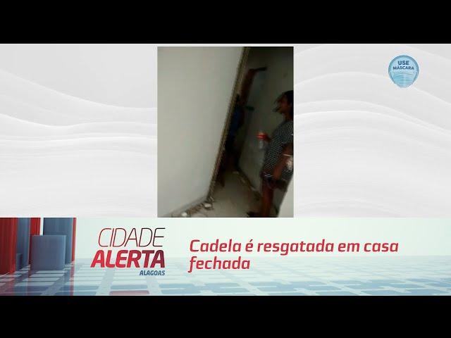 Cadela é resgatada em casa fechada no bairro do Pinheiro