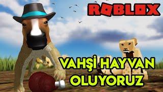 🦁 Vahşi Hayvan Oluyoruz 🦁 | Playbox Safari | Roblox Türkçe
