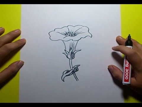 Como dibujar una flor paso a paso 8  How to draw a flower 8  YouTube
