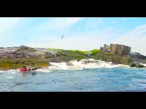 GoPro Kayaking Wipeout | Open Call Adventure