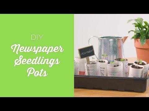 DIY Newspaper Seedlings Pots