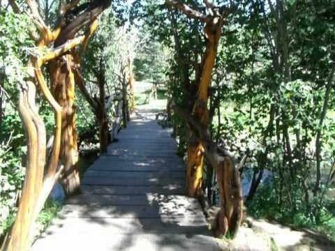 Greer, AZ Johnson River Retreat
