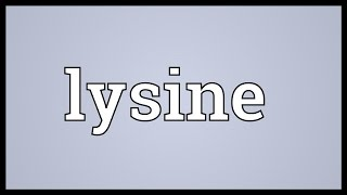 Lysine Meaning