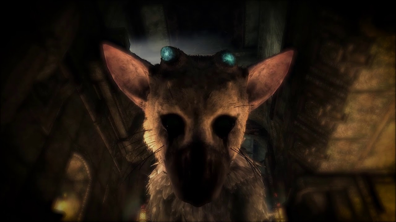 The Last Guardian Trico Ambiance Fire Trico Sounds Live