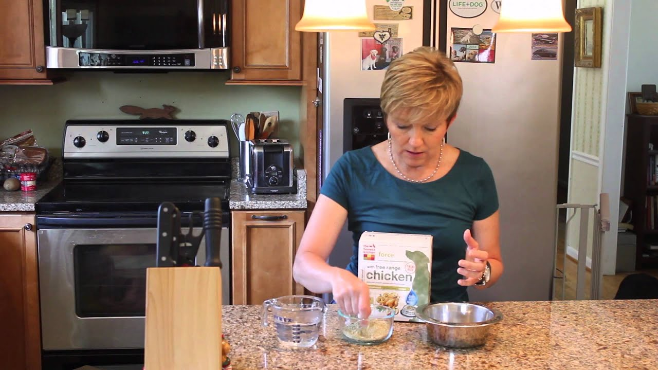 The Honest Kitchen   High Quality, Human Grade, And Convenient Dog Food    YouTube