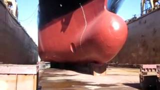 A Cargo Ship in the Floating Dock.avi