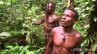 Begi cara suku anak dalam berburu