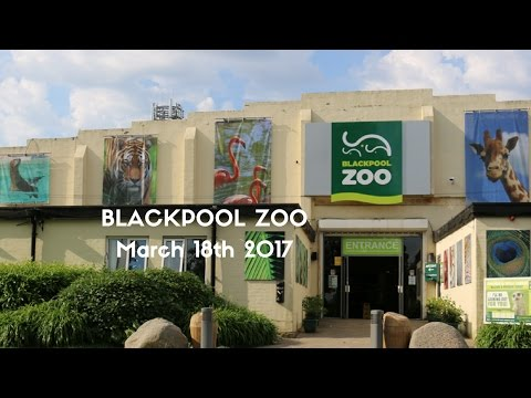 Blackpool Zoo March 18th 2017