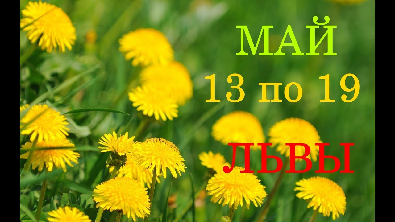 ЛЕВ. ТАРО-ГОРОСКОП на НЕДЕЛЮ с 13 по 19 МАЯ 2019 год.