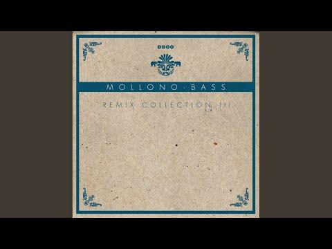 No Hau (Mollono.Bass And Seth Schwarz Remix)
