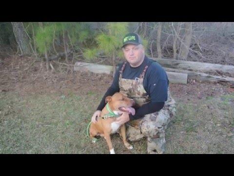 RUT LIFE's Chasin Bacon  Brad Sullivan's Boar