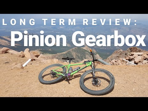 Pinion P1.12 - Long term review for XC riding
