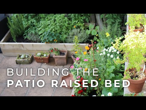 Building a Raised Bed for the Patio