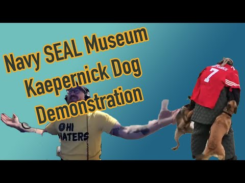 Navy SEAL Museum Dog Demonstration On Colin Kaepernick Stand-In - Zero Blog Thirty Episode 287