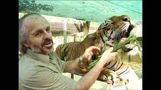 Amansamiento de felinos en el Zoo Lujan