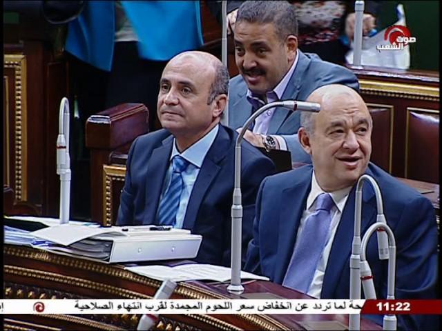 جلسة 2017⁄05⁄31׃ الجلسة العامة لمجلس النواب