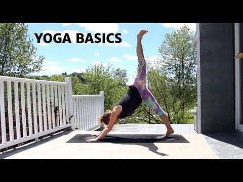 yoga basics  20 minutes  youtube