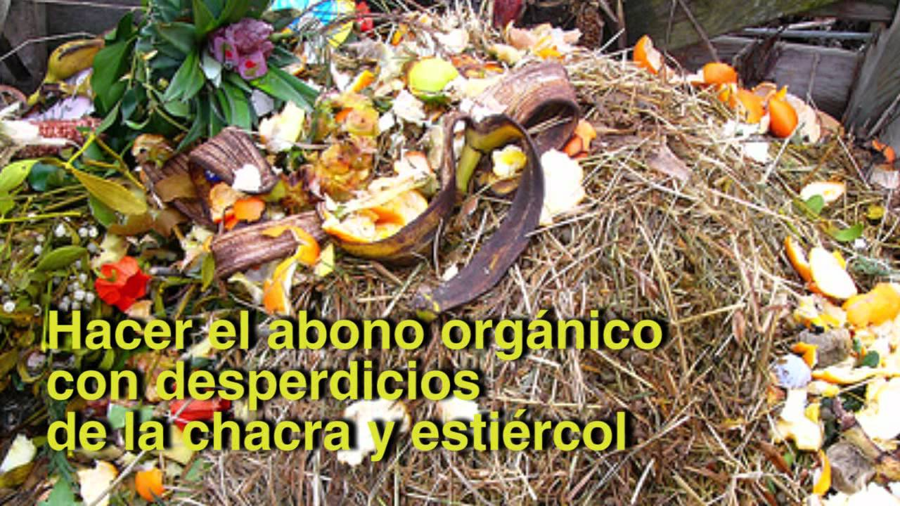 Consejos para mejorar la producci n del cacao abonos - Abono organico para plantas ...