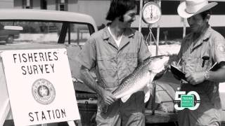 50th Anniversary Film: Texas Game Warden - Texas Parks and Wildlife [Official]