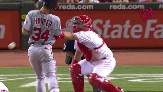 WSH@CIN: Harper hit in the back, exchanges words