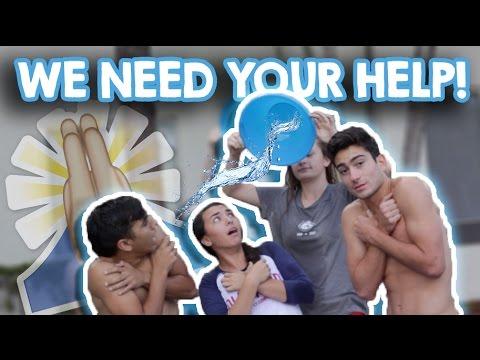 WE NEED YOUR HELP!!
