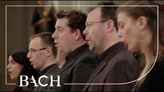 Скачать Bach Mass In B Minor BWV 232 Van Veldhoven Netherlands Bach Society