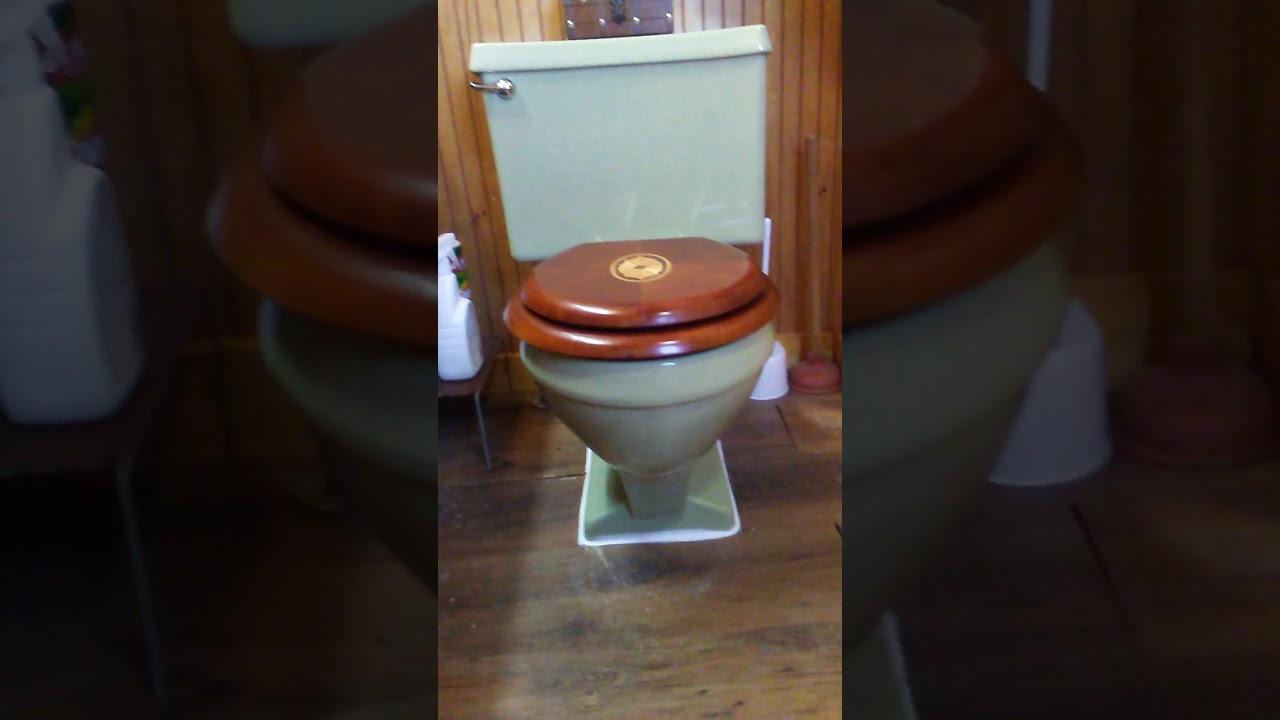 Eljer Emblem Toilet Seat. 1975 green eljer emblem toilet installed  YouTube