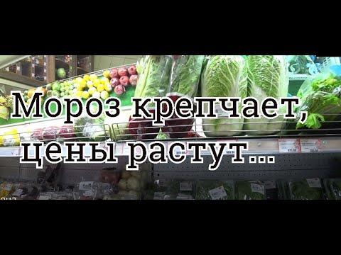 #Норильск L Что с хомяками? L Ностальгия по СССР