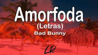 Bad Bunny - Amorfoda (Letras / Lyrics)