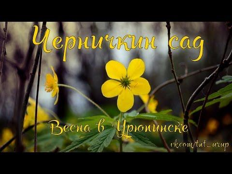 интим знакомство в урюпинске