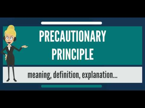 What is PRECAUTIONARY PRINCIPLE? What does PRECAUTIONARY PRINCIPLE mean?