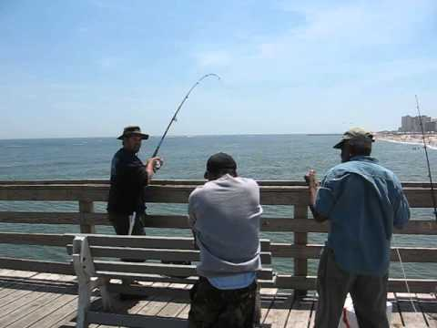 Va Beach Fishing Pier Bluefish
