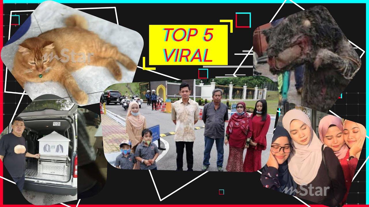 Top 5 Viral: Terkejut jumpa tikus gergasi dalam parit, remaja gementar bersemuka Tengku Hassanal