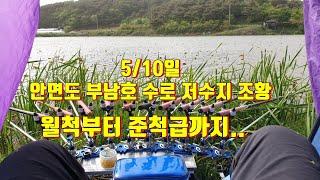 5/10일 안면도 부남호 저수지 수로조황 월척부터 준척…