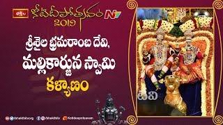 Srisaila Bhramaramba Mallikarjuna Swamy Kalyanam    Koti Deepotsavam 2019 Day 10