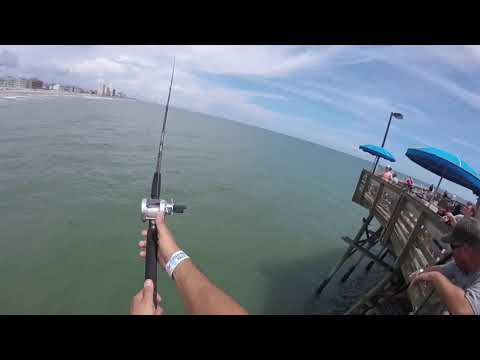 PIER FISHING In GARDEN CITY, SC