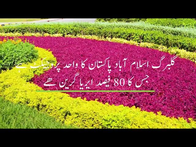 اپنا خوابوں کا گھر گلبرگ اسلام آباد میں تعمیر کریں